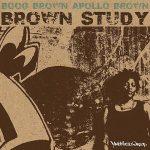 Apollo Brown & Boog Brown – 2010 – Brown Study