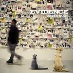 Evidence – 2011 – Cats & Dogs