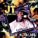 JT The Bigga Figga – 1995 – Dwellin' In Tha Labb