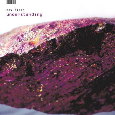 New Flesh - 2002 - Understanding