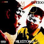 Skyzoo – 2020 – Milestones