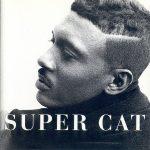 Super Cat – 1995 – The Struggle Continues