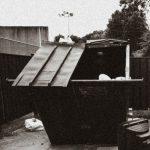 The Doppelgangaz – 2020 – Dumpster Dive