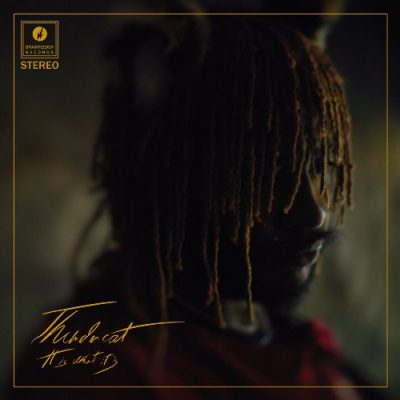 Thundercat - 2020 - It Is What It Is (Japan Edition)