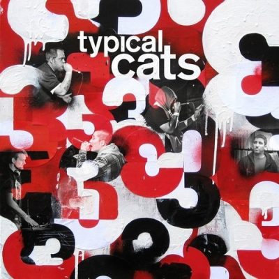 Typical Cats - 2012 - 3