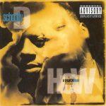 Schoolly D – 1991 – How A Black Man Feels