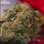 Ca$his – 2021 – OG & Green Tea 4
